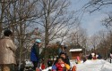 富雪遊び大会2016