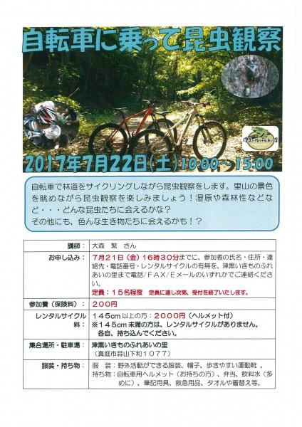 自転車昆虫観察