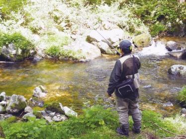 白賀渓流釣り大会