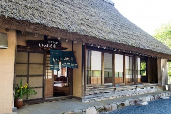山菜採り&天ぷら作り体験②